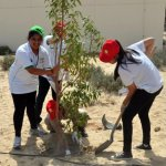 We all supported each other and helped plant trees